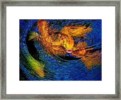Carps In Motion Framed Print by Ken Stanback