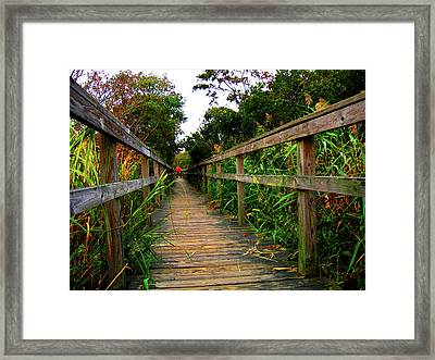 Carrituck Perspective Framed Print by Ed Golden