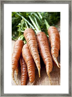 Carrots Framed Print by Elena Elisseeva