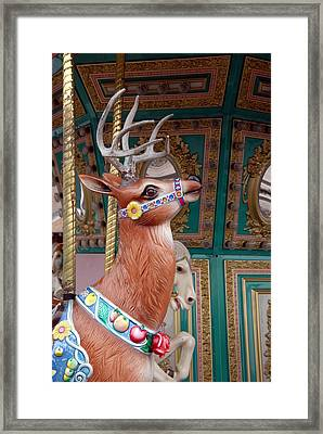Carrousel 96 Framed Print by Joyce StJames
