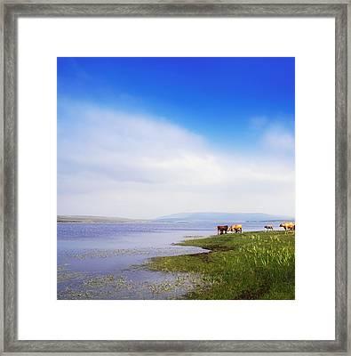Carrowmore Lake, Co Mayo, Ireland Framed Print by The Irish Image Collection
