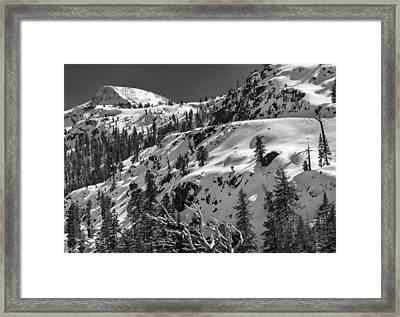 Carson Pass Framed Print