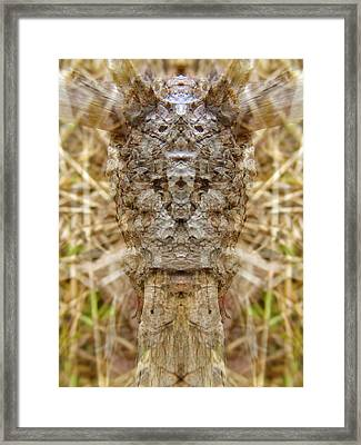 Carved Craving Framed Print by Lynzi Wildheart