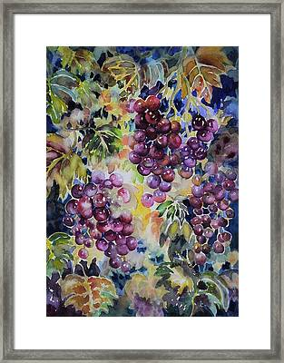 Cascade Framed Print by Ann  Nicholson