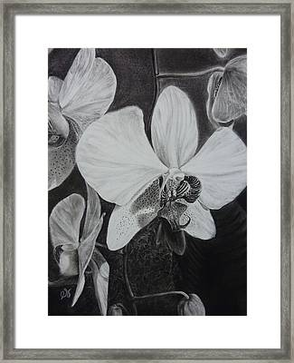 Cascade Of Orchidds Framed Print by Estephy Sabin Figueroa