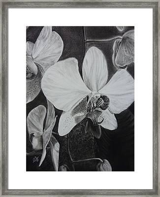 Cascade Of Orchidds Framed Print