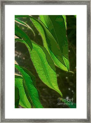 Cascading Leaves Framed Print