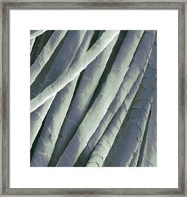Cashmere Wool Fibres, Sem Framed Print by Steve Gschmeissner