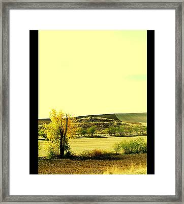 Castilla La Mancha Spain Framed Print by Guadalupe Nicole Barrionuevo