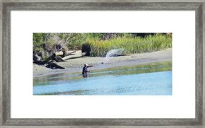 Casting For Shrimp At Hunting Island Framed Print by Patricia Greer