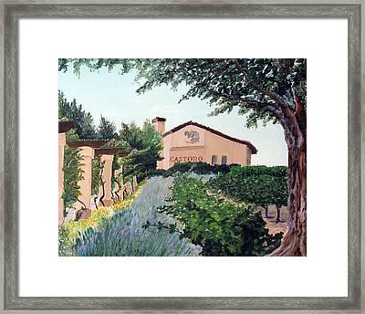 Castoro Winery Framed Print by Barbara Willey