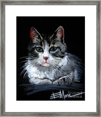 Cat 2 Framed Print by Mona Edulesco