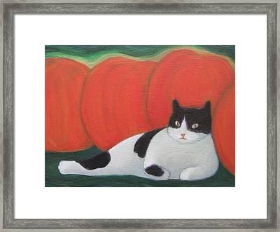 Cat And Pumpkins  Framed Print