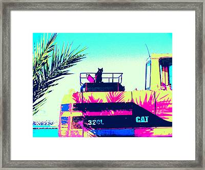 CAT Framed Print by Anita Dale Livaditis