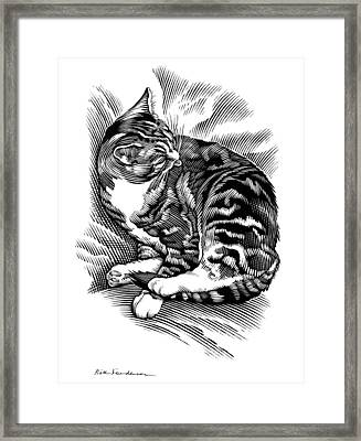 Cat Grooming Its Fur, Artwork Framed Print by Bill Sanderson