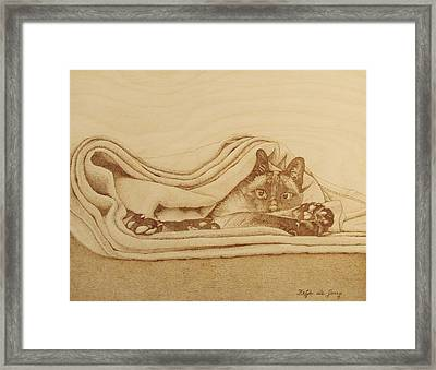 Cat In The Folds Framed Print by Fay De Jong