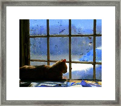 Cat In The Window Framed Print by Randall Weidner