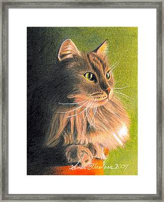 Framed Print featuring the drawing Cat Miniature by Ana Tirolese