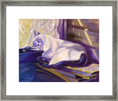 Cat Nap In The Office Framed Print by Susan A Becker