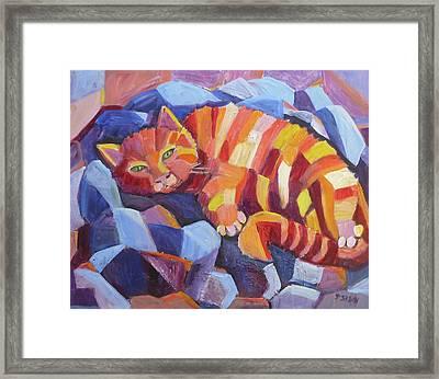 Cat Nap Framed Print by Saga Sabin