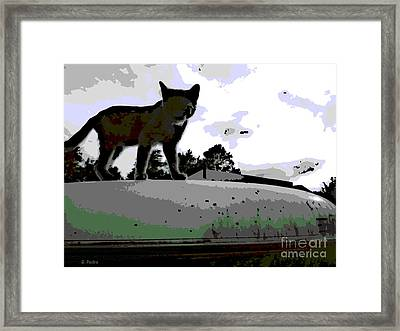 Cat On A Hot Tin Roof Framed Print