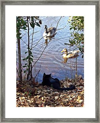 Cat Play Framed Print by Joan Meyland