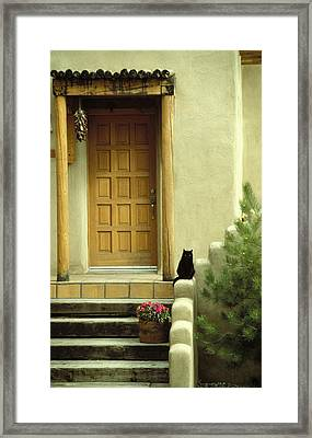 Framed Print featuring the photograph Cat Post by Brent L Ander
