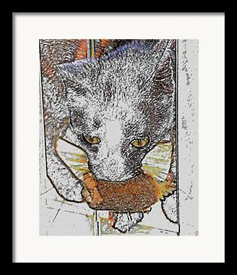 Cat Toy Digital Art Framed Prints