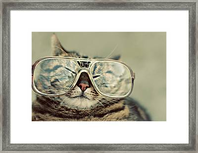 Cat With Glasses Framed Print by Sara Miedema