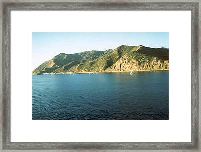 Framed Print featuring the photograph Catalina In The Morning by Sheila Silverstein
