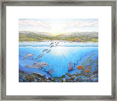 Catalina Island California Framed Print by Jerome Stumphauzer