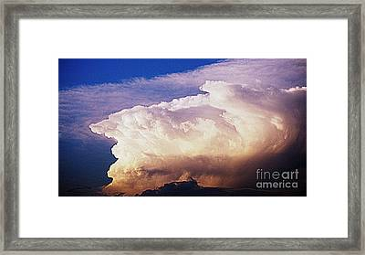 Catch The Wave Framed Print by Paul  Wilford