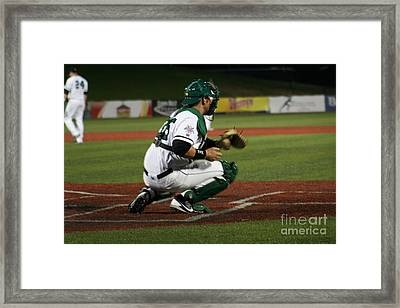 Catcher Framed Print by Roger Look