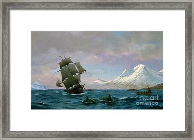 Catching Whales Framed Print by J E Carl Rasmussen