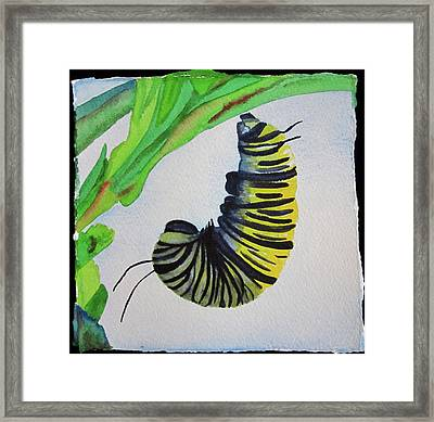 Framed Print featuring the painting Caterpillar by Teresa Beyer