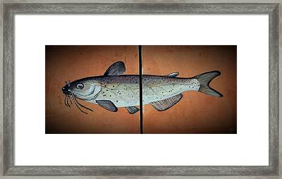 Catfish Framed Print by Andrew Drozdowicz