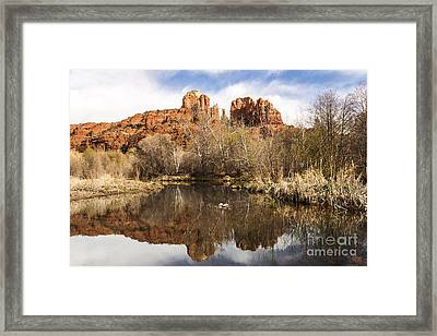 Cathedral Rock Reflections Landscape Framed Print by Darcy Michaelchuk