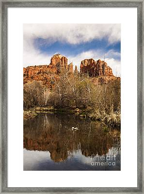 Cathedral Rock Reflections Portrait 1 Framed Print by Darcy Michaelchuk
