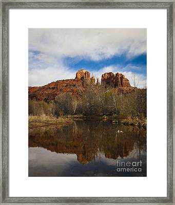 Cathedral Rock Reflections Portrait 2 Framed Print by Darcy Michaelchuk