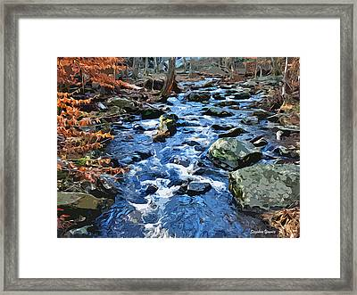 Catoctin Stream Framed Print by Stephen Younts