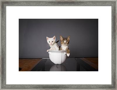 Cats In Hat Framed Print