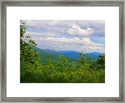 Catskill Mountain Hillside Framed Print