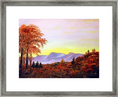 Catskills Framed Print by Phil Burton