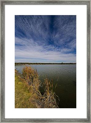 Cattails Against Colorado Blue Framed Print by KatagramStudios Photography