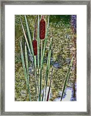 Framed Print featuring the photograph Cattails Along The Pond by Don Schwartz