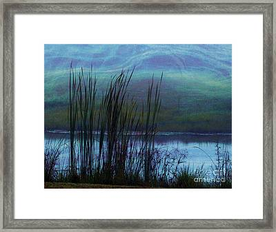 Cattails In Mist Framed Print by Judi Bagwell