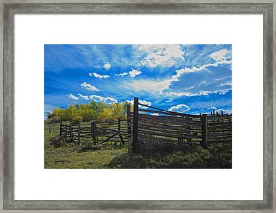 Cattle Chute And Corral Framed Print by Stephen  Johnson