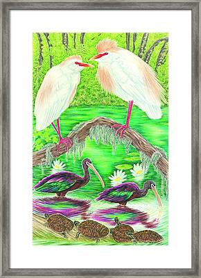 Cattle Egrets With Ibis Framed Print