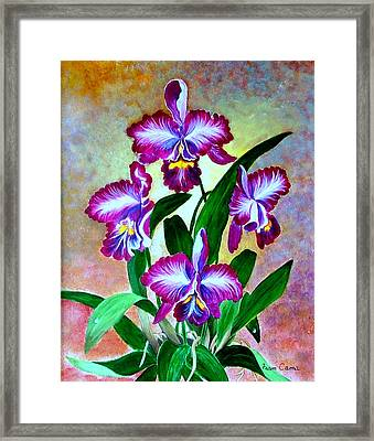 Framed Print featuring the painting Cattleya Orchid by Fram Cama