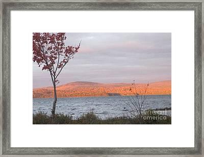 Caucomgomoc Lake Sunrise In Maine Framed Print